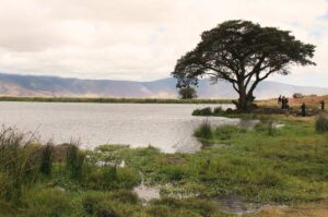 5 Days Luxury Lodge Safari- Serengeti and Ngorongoro Crater